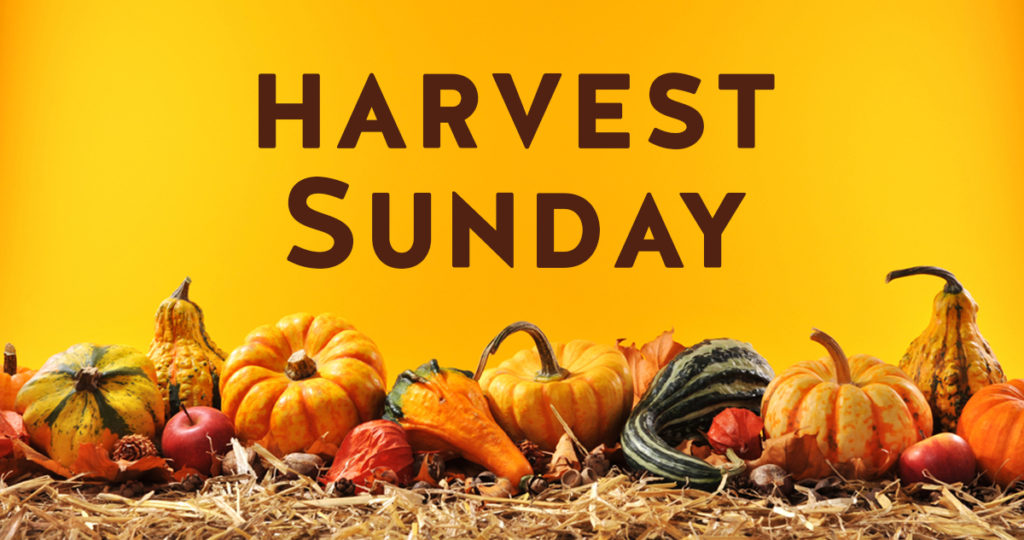 harvest-sunday-open-graph-1024x540